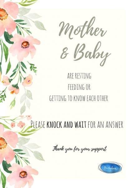 Birth Plan Door Sign